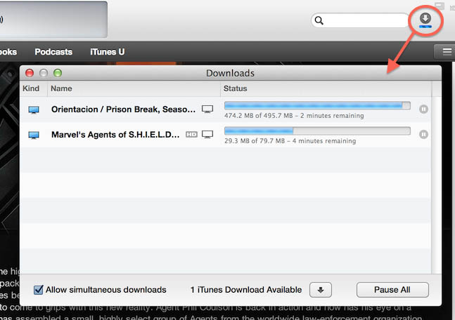 iTunes - Download in progress - Pull up the Details View