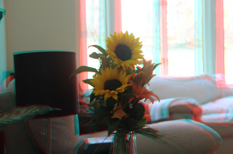 3D Picture with the flowers as the focal point