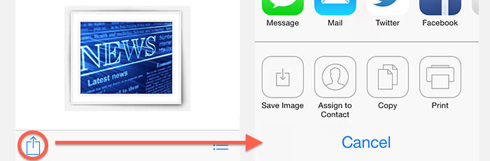 iPad/iPhone - Copy or Save Images in Detail View (Share Button)