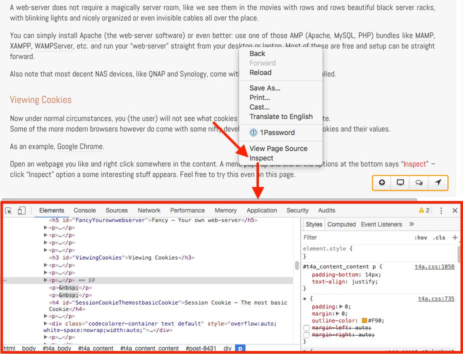 Google Chrome - Web Developer view